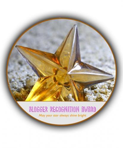 Awardblogreco 530x640