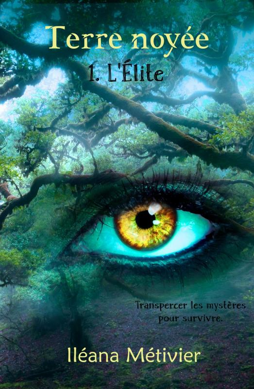 Couv ebook terre noyee t1 l elite ileana metiver