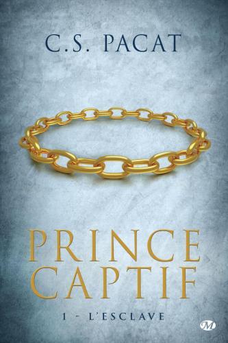 Prince captif tome 1 l esclave 572836