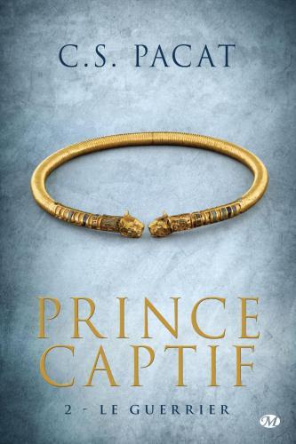 Prince captif tome 2 le guerrier 572837
